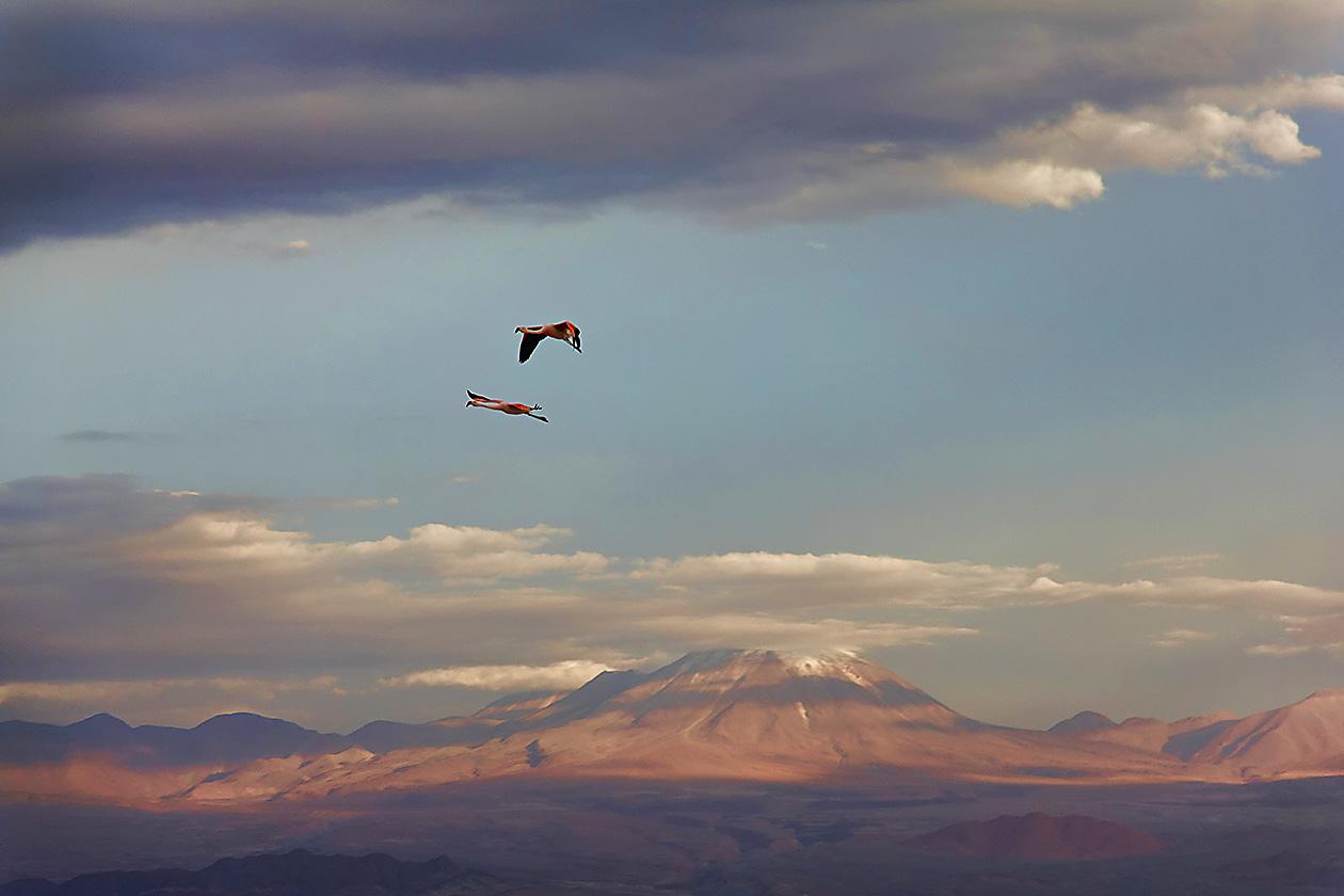 2011_01_25_IMG_0424_Chile_AtacamaDesert_DxO_TzI
