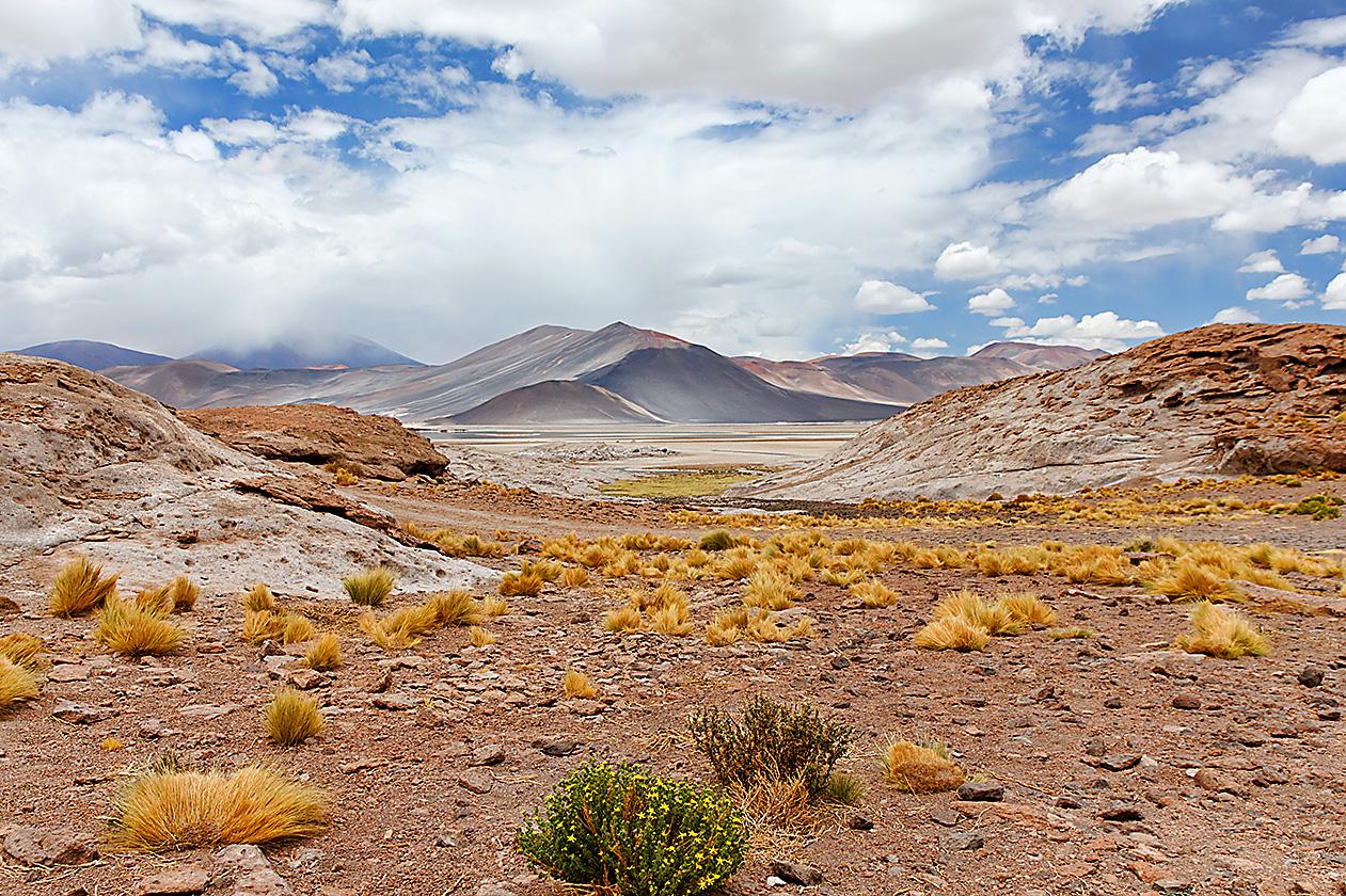 2011_01_26_IMG_0465_DxO_Chile_AtacamaK