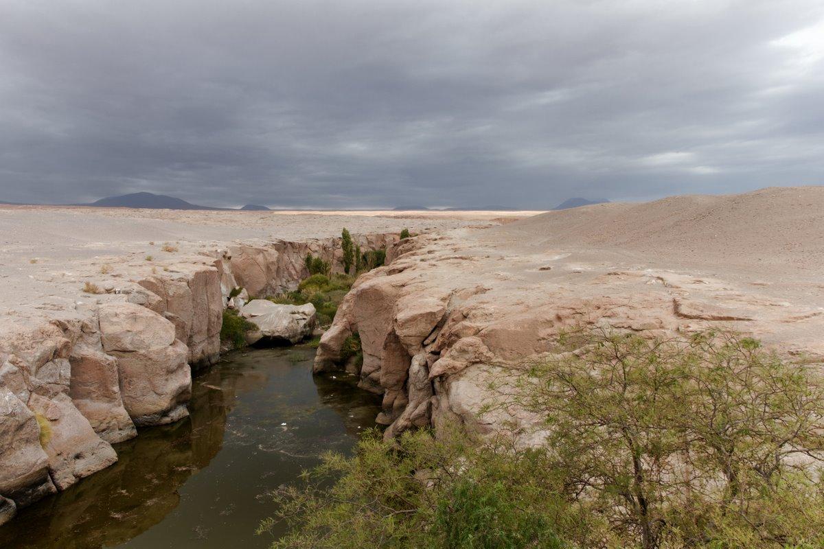 2011_01_25_IMG_0407_Chile_AtacamaDesert_DxO