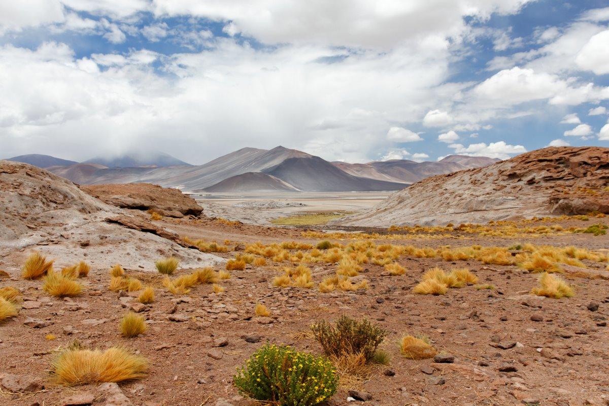 2011_01_26_IMG_0465_DxO_Chile_Atacama