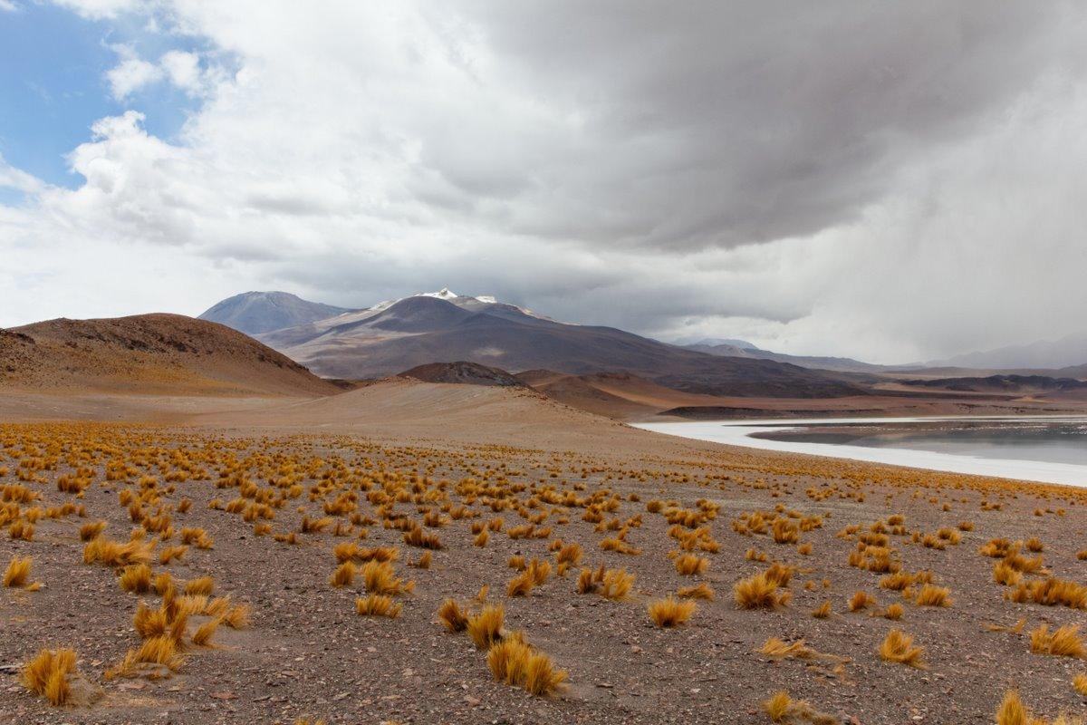 2011_01_26_IMG_0490_DxO_Chile_Atacama