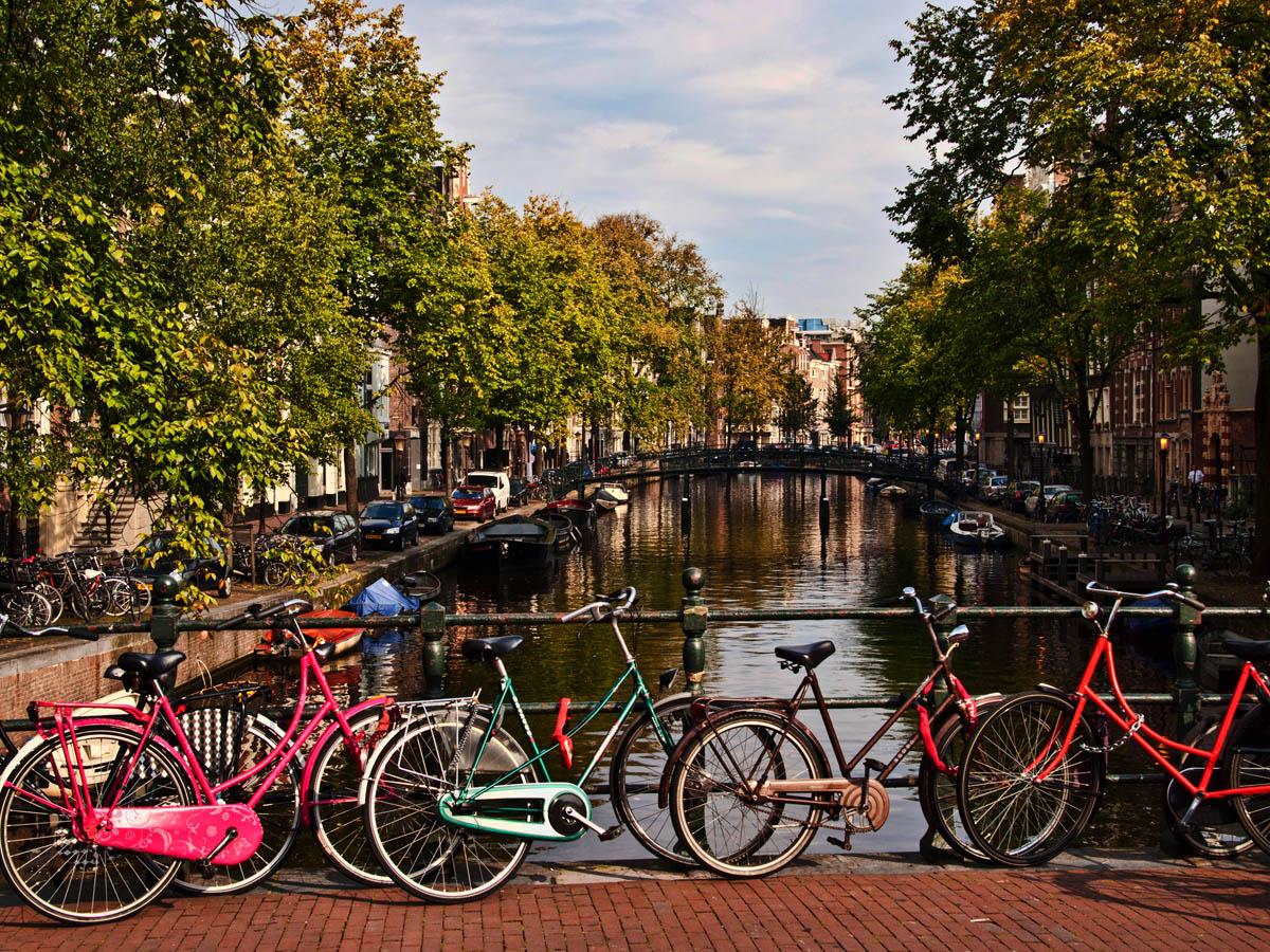 _9230792_Amsterdam_Tz.jpg