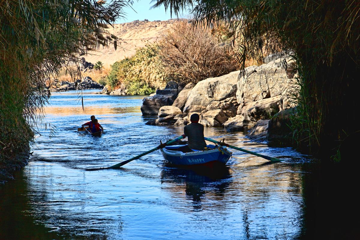 Rowers in the Nile - near Aswan